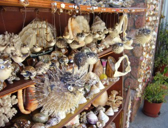 Written comment on the plenary's wildlife trade debate