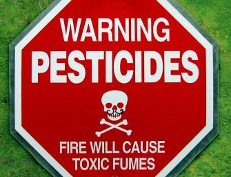 A Monsanto-ügy: rákkeltő szerért lobbiztak az Európai Unióban