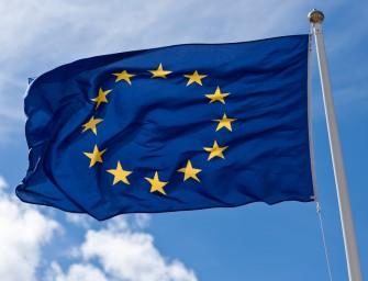 EBESZ választási megfigyelőket az EP-választásra!