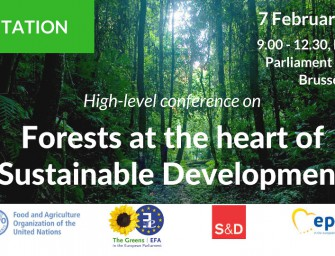 Forests at the heart of Sustainable Development